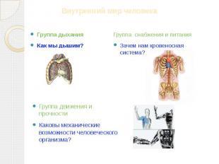 Группа дыхания Как мы дышим? Группа снабжения и питания Зачем нам кровеносная си