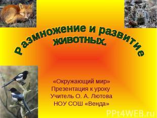 Размножение и развитие животных.Окружающий мир»Презентация к уроку Учитель О. А.