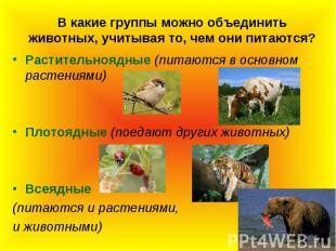 В какие группы можно объединить животных, учитывая то, чем они питаются?Растител