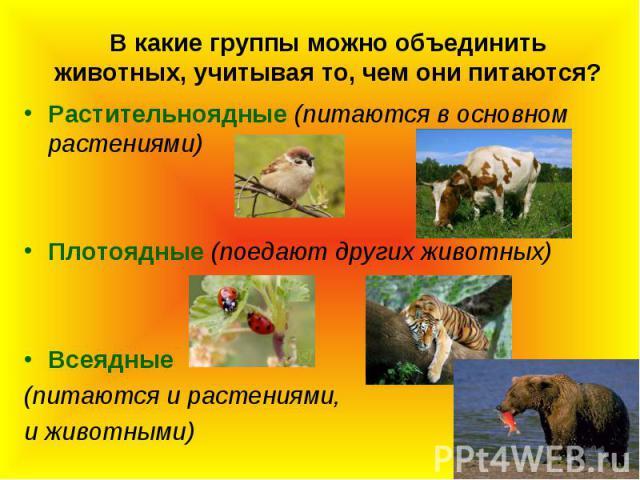 В какие группы можно объединить животных, учитывая то, чем они питаются?Растительноядные (питаются в основном растениями)Плотоядные (поедают других животных)Всеядные (питаются и растениями, и животными)