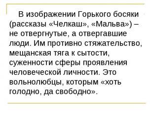 В изображении Горького босяки (рассказы «Челкаш», «Мальва») – не отвергнутые, а