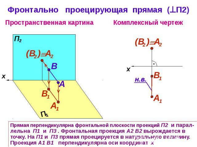 Фронтально проецирующая прямая (П2) Прямая перпендикулярна фронтальной плоскости проекций П2 и парал-лельна П1 и П3 . Фронтальная проекция А2 В2 вырождается в точку. На П1 и П3 прямая проецируется в натуральную величину. Проекция А1 В1 перпендикуляр…