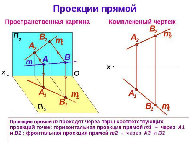 Проекции прямой Проекции прямой m проходят через пары соответствующих проекций точек: горизонтальная проекция прямой m1 – через А1 и В1 ; фронтальная проекция прямой m2 – через А2 и В2