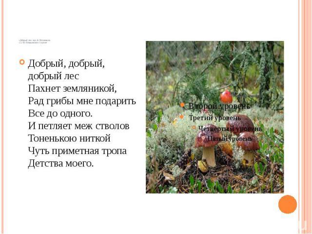 «Добрый лес» муз. Б. Потемкина сл. М. Пляцковского 1 куплет Добрый, добрый, добрый лес Пахнет земляникой, Рад грибы мне подарить Все до одного. И петляет меж стволов Тоненькою ниткой Чуть приметная тропа Детства моего.