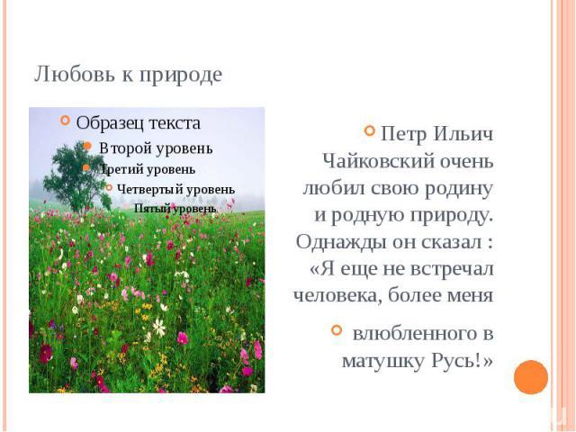 Любовь к природе Петр Ильич Чайковский очень любил свою родину и родную природу. Однажды он сказал : «Я еще не встречал человека, более меня влюбленного в матушку Русь!»