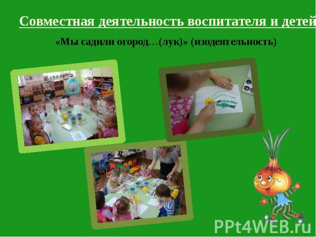 Совместная деятельность воспитателя и детей: Совместная деятельность воспитателя и детей: «Мы садили огород…(лук)» (изодеятельность)