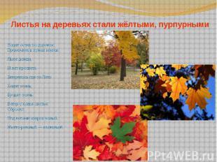 Листья на деревьях стали жёлтыми, пурпурными Ходит осень по дорожке, Промочила в