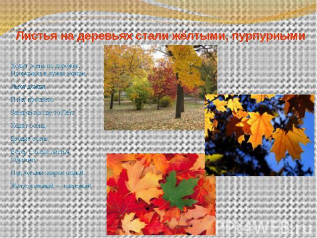 Листья на деревьях стали жёлтыми, пурпурными Ходит осень по дорожке, Промочила в лужах ножки. Льют дожди, И нет просвета. Затерялось где-то Лето. Ходит осень, Бродит осень. Ветер с клена листья Сбросил. Под ногами коврик новый, Желто-розовый — кленовый.