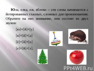 Юла, елка, еж, яблоко – эти слова начинаются с йотированных гласных, сложных для