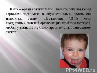 Язык – орган артикуляции. Научите ребенка перед зеркалом поднимать и опускать яз