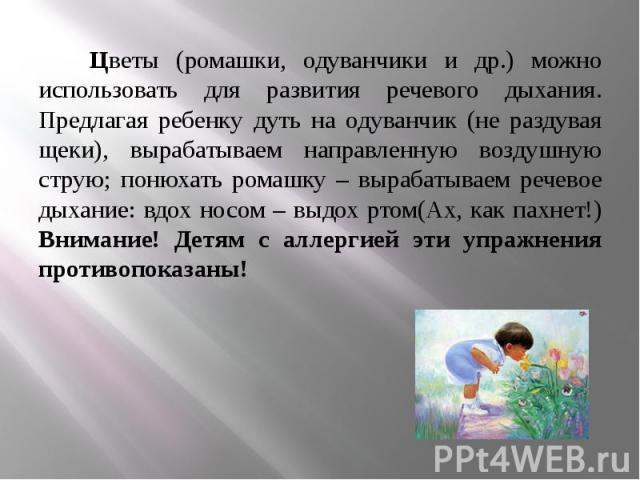 Цветы (ромашки, одуванчики и др.) можно использовать для развития речевого дыхания. Предлагая ребенку дуть на одуванчик (не раздувая щеки), вырабатываем направленную воздушную струю; понюхать ромашку – вырабатываем речевое дыхание: вдох носом – выдо…