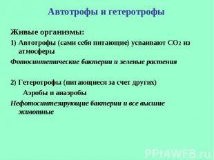 Живые организмы: Живые организмы: Автотрофы (сами себя питающие) усваивают СО2 и