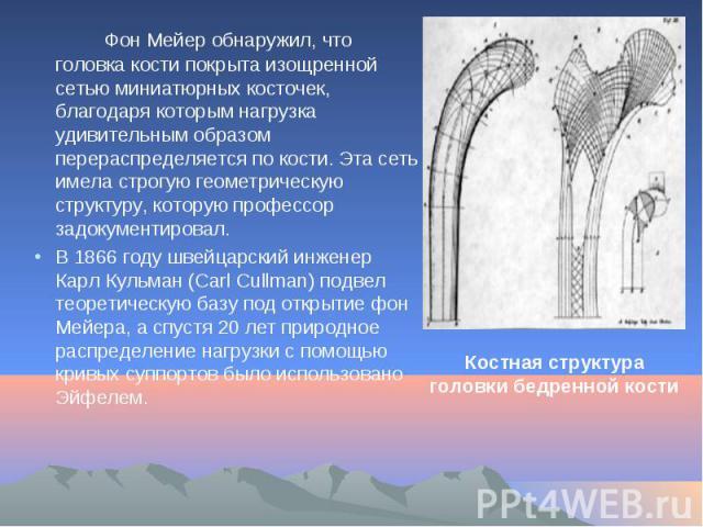 Фон Мейер обнаружил, что головка кости покрыта изощренной сетью миниатюрных косточек, благодаря которым нагрузка удивительным образом перераспределяется по кости. Эта сеть имела строгую геометрическую структуру, которую профессор задокументировал. Ф…