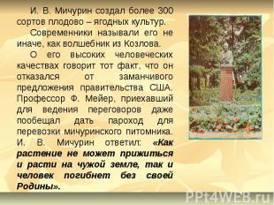 И. В. Мичурин создал более 300 сортов плодово – ягодных культур.Современники наз