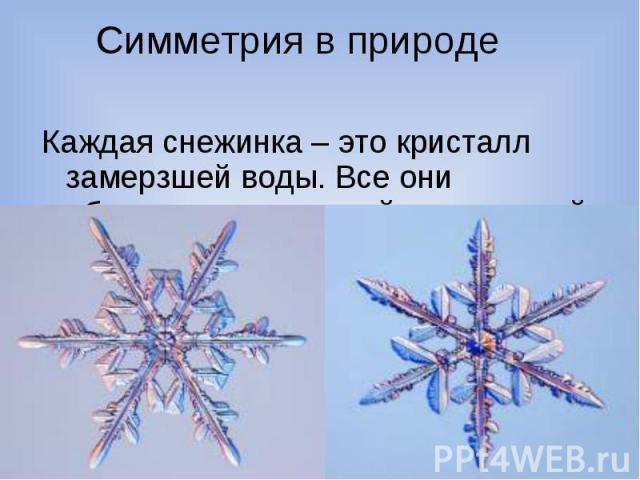 Симметрия в природеКаждая снежинка – это кристалл замерзшей воды. Все они обладают поворотной симметрией.