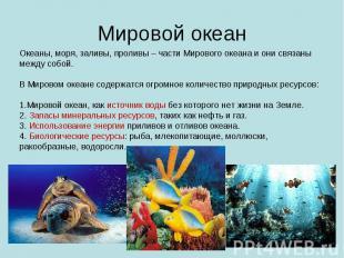 Мировой океан Океаны, моря, заливы, проливы – части Мирового океана и они связан
