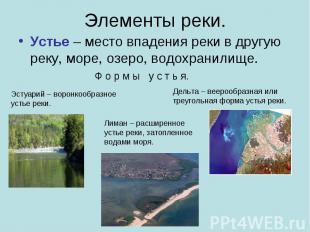 Элементы реки. Устье – место впадения реки в другую реку, море, озеро, водохрани