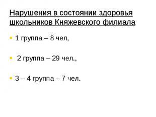 Нарушения в состоянии здоровья школьников Княжевского филиала 1 группа – 8 чел,
