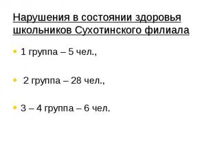 Нарушения в состоянии здоровья школьников Сухотинского филиала 1 группа – 5 чел.