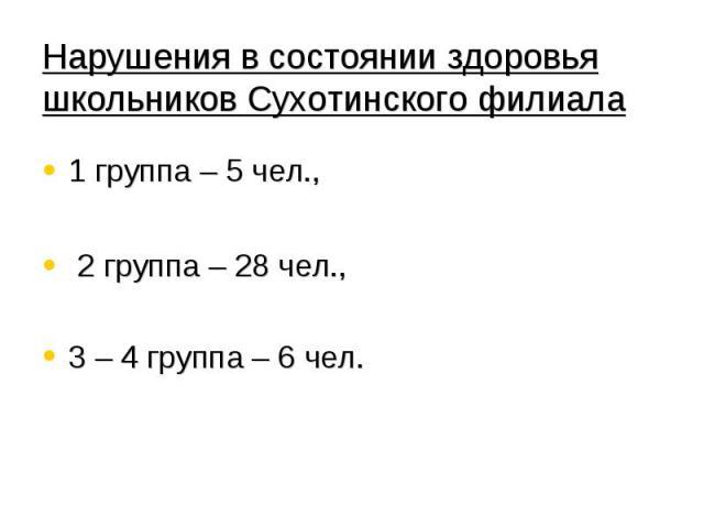 Нарушения в состоянии здоровья школьников Сухотинского филиала 1 группа – 5 чел., 2 группа – 28 чел., 3 – 4 группа – 6 чел.