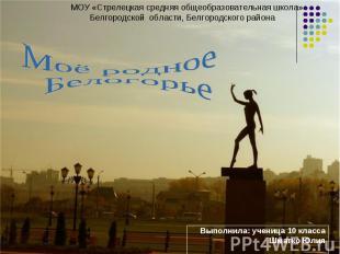 МОУ «Стрелецкая средняя общеобразовательная школа» Белгородской области, Белгоро