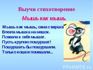 Выучи стихотворение Мышь как мышь. Мышь как мышь, сама с вершок! Влезла мышка на