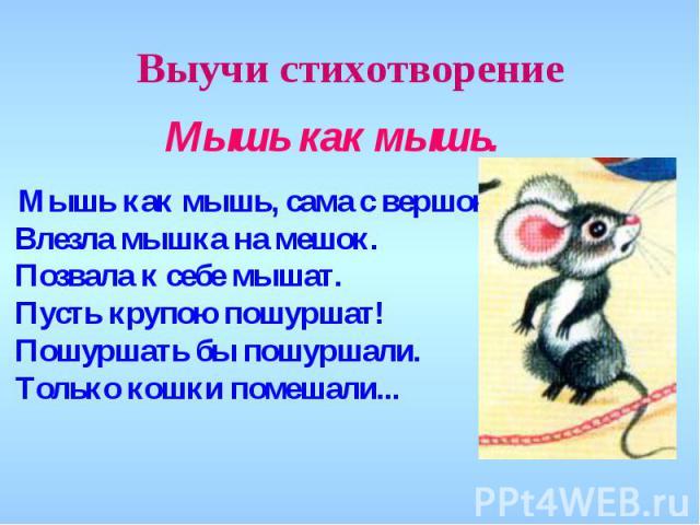 стихи для детей про мышку искать Бульоны можно