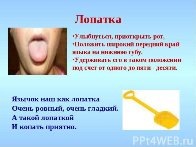 Лопатка Улыбнуться, приоткрыть рот, Положить широкий передний край языка на нижнюю губу.Удерживать его в таком положении под счет от одного до пяти - десяти. Язычок наш как лопатка Очень ровный, очень гладкий. А такой лопаткой И копать приятно.