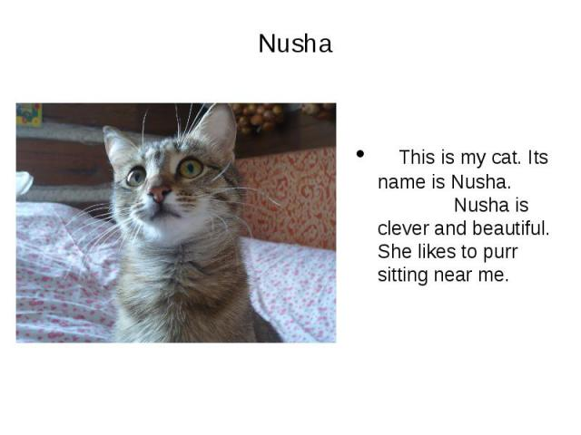 Nusha This is my cat. Its name is Nusha. Nusha is clever and beautiful. She likes to purr sitting near me.