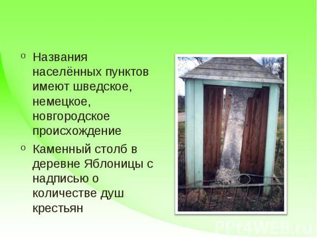 Названия населённых пунктов имеют шведское, немецкое, новгородское происхождениеКаменный столб в деревне Яблоницы с надписью о количестве душ крестьян