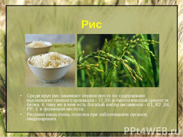 Рис Среди круп рис занимает первое место по содержанию высококачественного крахмала - 77,3% и биологической ценности белка. К тому же в нем есть богатый набор витаминов - B1, В2 ,В6, РР, Е и фолиевая кислота.Рисовая каша очень полезна при заболевани…
