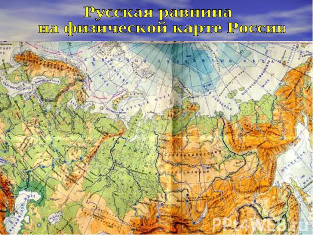 Русская равнина на физической карте России