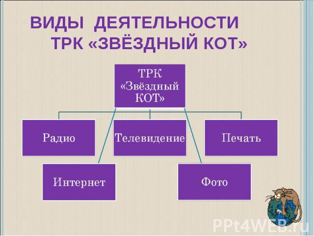 Виды деятельности ТРК «Звёздный КОТ»