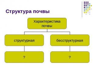 Структура почвы