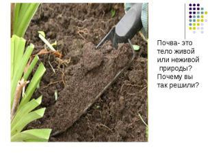 Почва- этотело живой или неживой природы?Почему вытак решили?