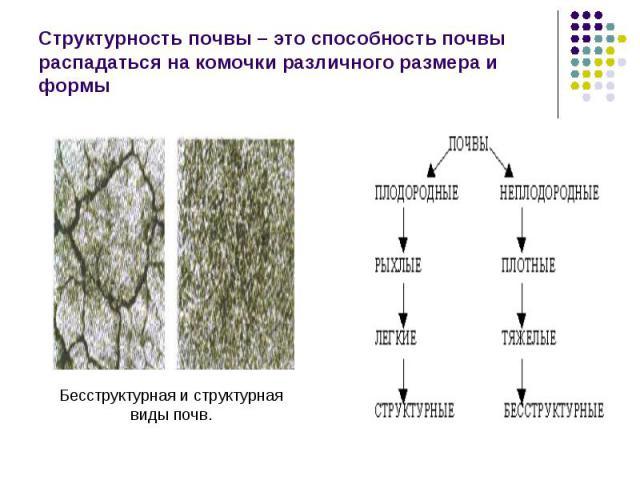 Структурность почвы – это способность почвы распадаться на комочки различного размера и формы Бесструктурная и структурнаявиды почв.
