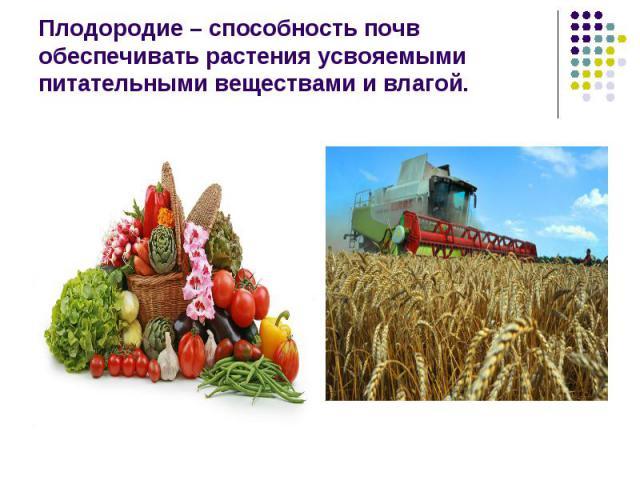 Плодородие – способность почв обеспечивать растения усвояемыми питательными веществами и влагой.