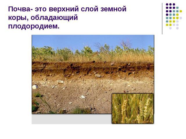 Почва- это верхний слой земной коры, обладающийплодородием.