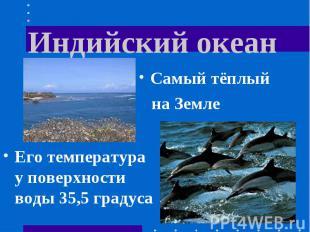 Индийский океан Самый тёплый на ЗемлеЕго температура у поверхности воды 35,5 гра