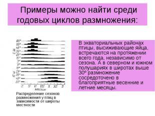 Примеры можно найти среди годовых циклов размножения: В экваториальных районах п
