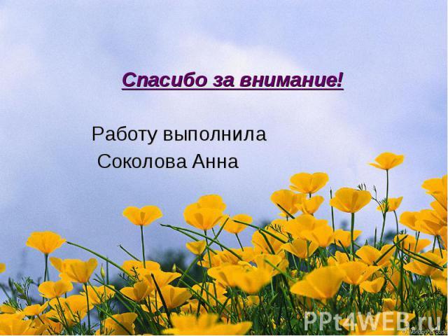 Спасибо за внимание! Работу выполнила Соколова Анна