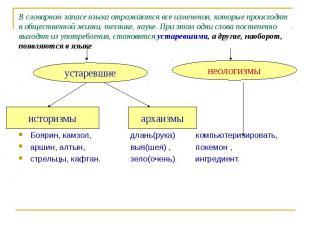 В словарном запасе языка отражаются все изменения, которые происходят в обществе