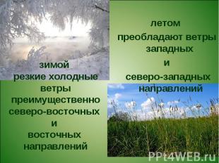 летом преобладают ветры западных и северо-западных направленийзимой резкие холод