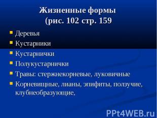 Жизненные формы (рис. 102 стр. 15 9 ДеревьяКустарникиКустарничкиПолукустарничкиТ