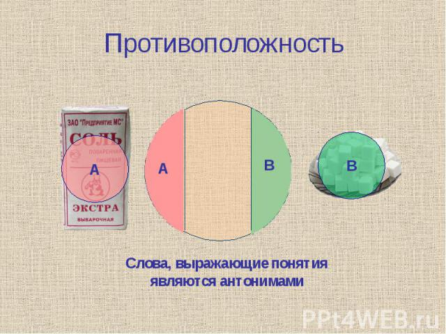 Противоположность Слова, выражающие понятия являются антонимами