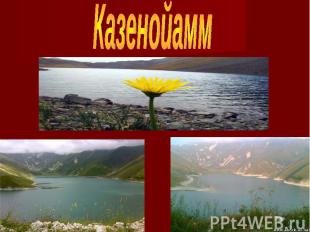 Казенойамм