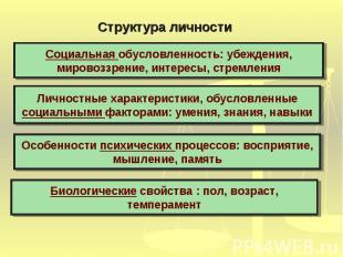 Структура личностиСоциальная обусловленность: убеждения, мировоззрение, интересы