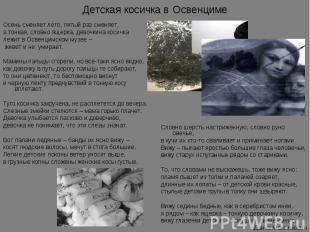 Детская косичка в Освенциме Осень сменяет лето, пятый раз сменяет,а тонкая, слов