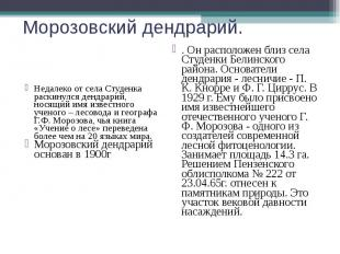Морозовский дендрарий. Недалеко от села Студенка раскинулся дендрарий, носящий и