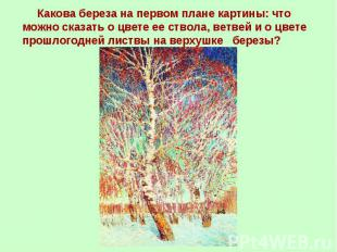 Какова береза на первом плане картины: что можно сказать о цвете ее ствола, ветв
